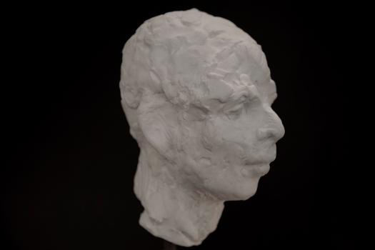 Buste en plâtre, profil
